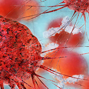 Important mechanisms discovered in identification of cancer growth